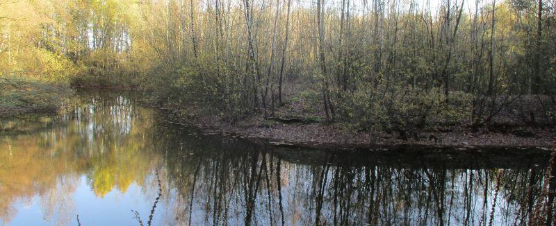 Gewässer im Biotopverbund
